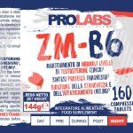 zmb6-label